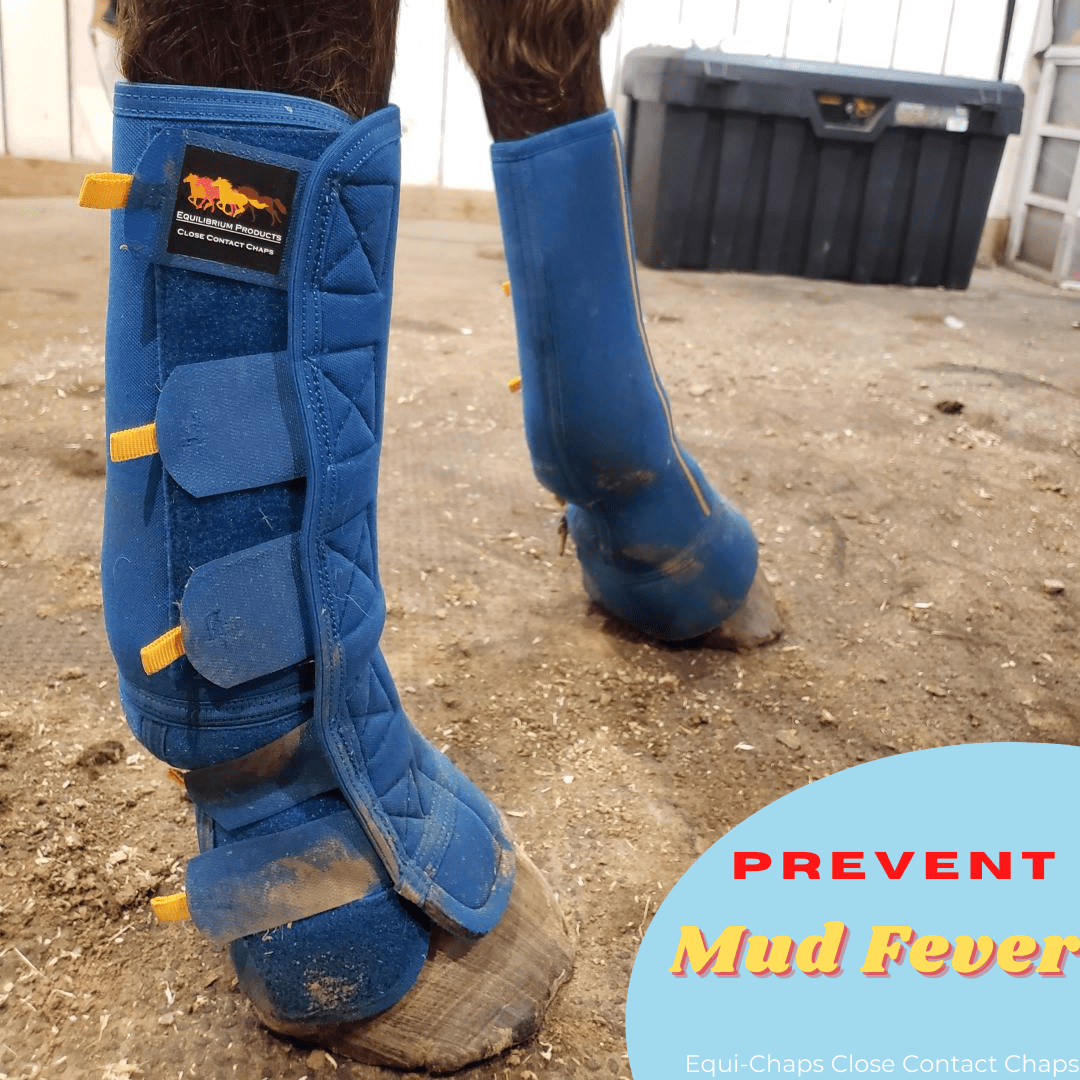 Prevent Mud Fever with Turnout Boots